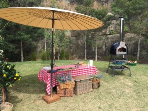 The Bachelor wood fire Oven 2